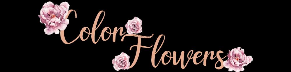 Интернет магазин цветов ColorFlowers