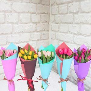 Тюльпаны в упаковке 7 штук